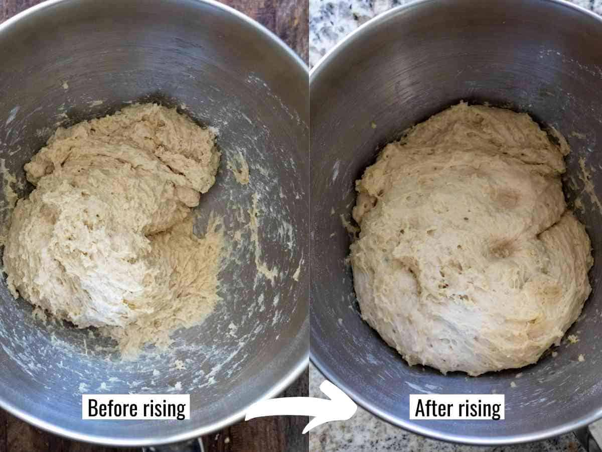 Dough in stand mixer before and after rising and doubling in size over 1 hour.
