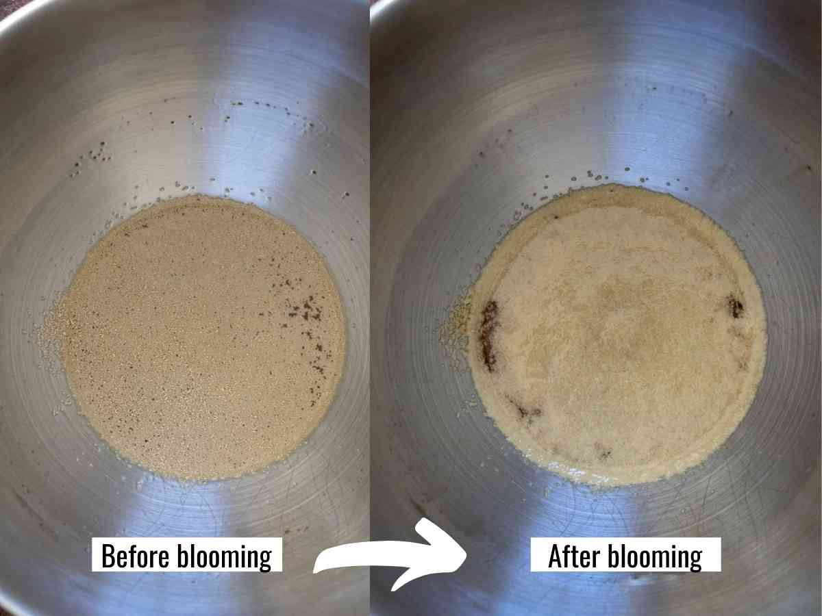 Two photos showing the coconut sugar and water mixed together to bloom the yeast after 10 minutes.